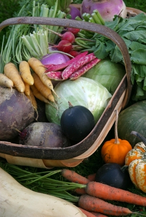 25 Best Foods To Detox Your Body