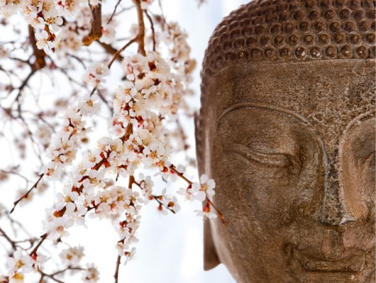 Healing with Bodywork & Energywork